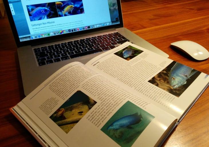 Malawi Aquarium Planung und Vorbereitung
